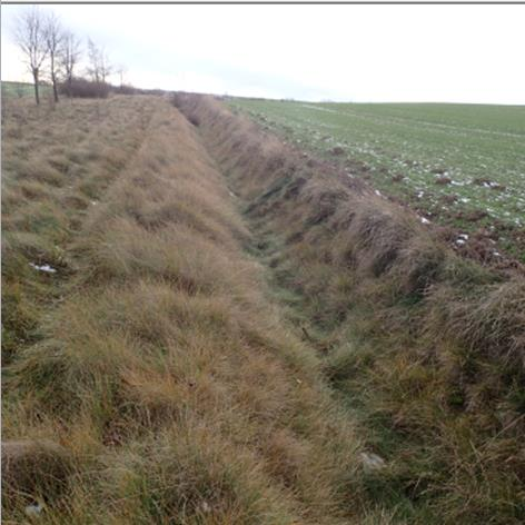 Drainage ditches; swales Image