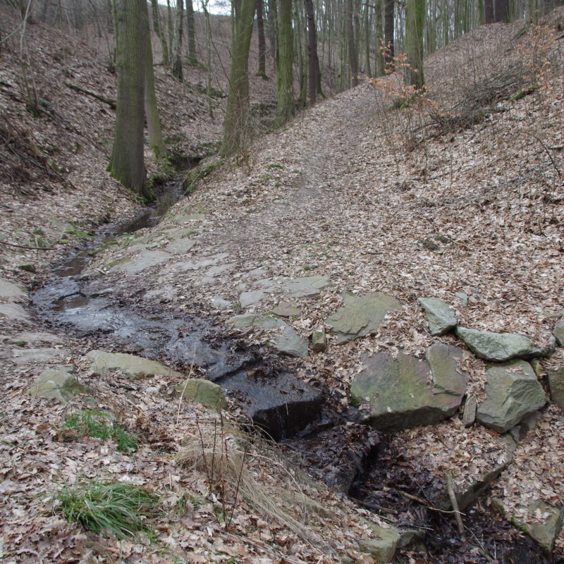 Appropriate design of unsealed roads and stream crossing in forests Image