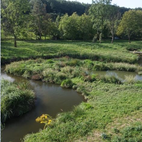 Increasing the retention capacity of existing channels and floodplains by restoration Image
