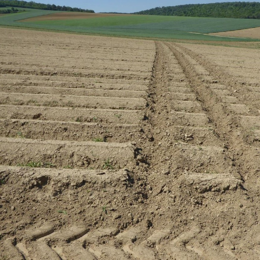 Cultivation across the slope; avoidance of downhill furrows and lanes Image