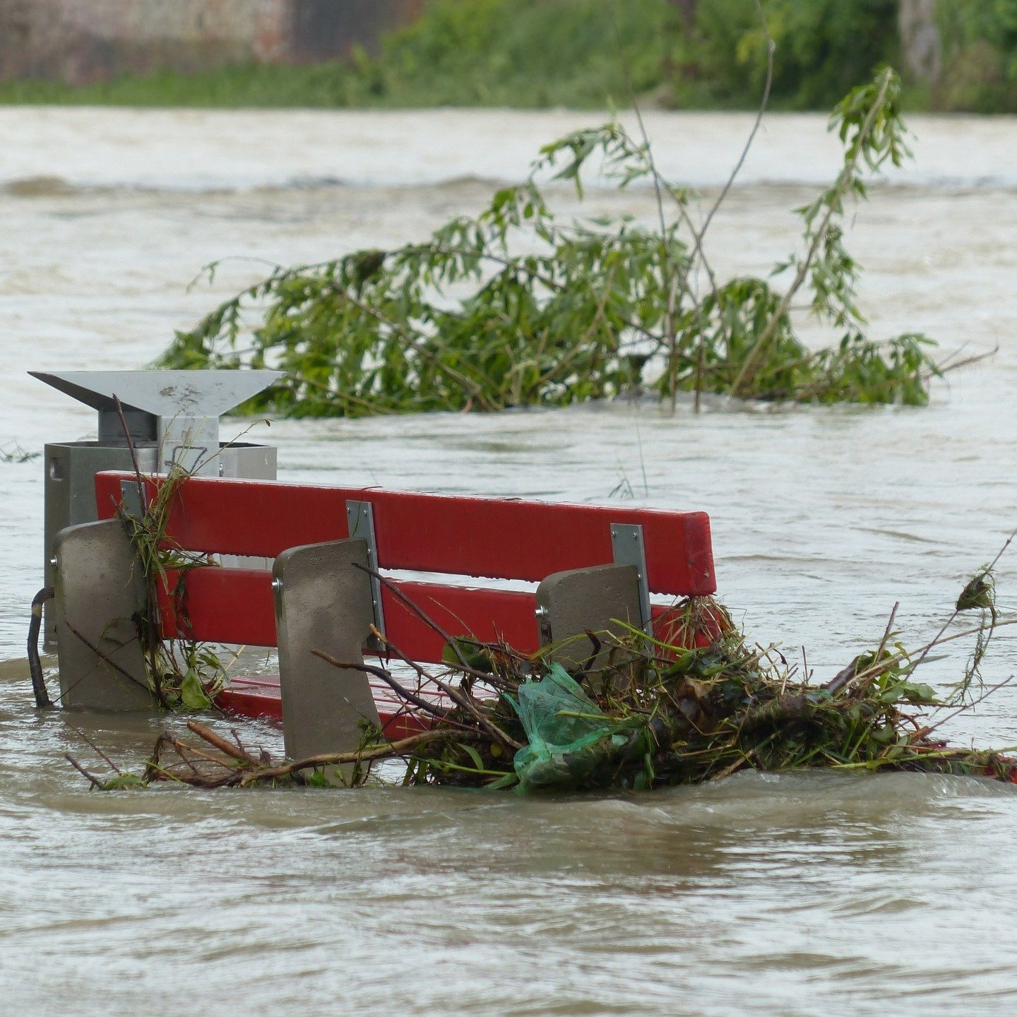 Assessing and clearing of environmental flood damages Image